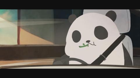 PANDA FORM PROMO ANIMATION